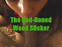 Weed head redbone hoe sucks me up at the pad