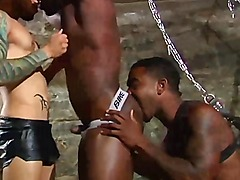 Black BDSM amateur jock threesome with white dude